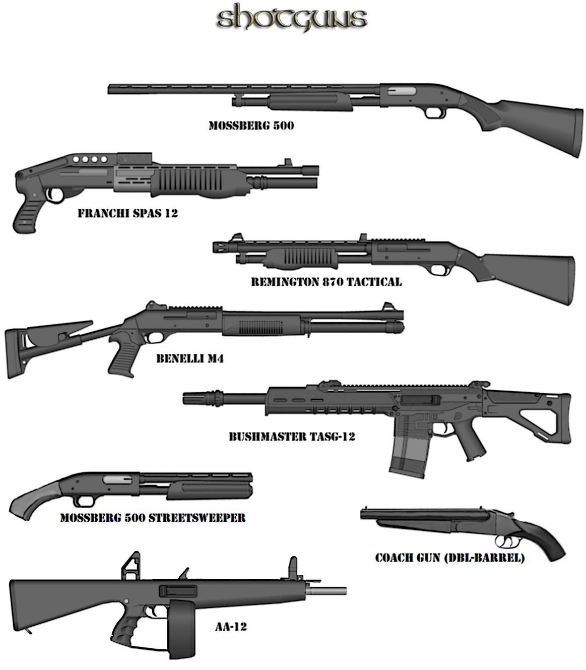 All Types Of Shotguns Www Imgkid Com The Image Kid Has It